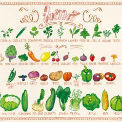Fruits & légumes de Juillet